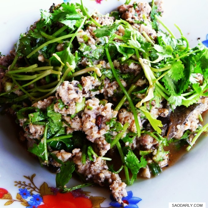 Mekong Fish Salad
