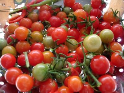 lao garden - cherry tomatoes