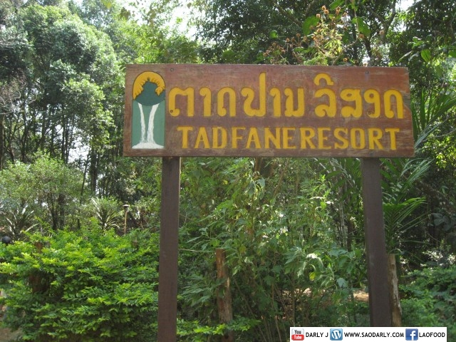 Tad Fane Resort