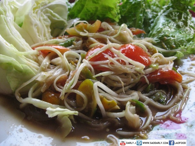 Lao Green Papaya Salad