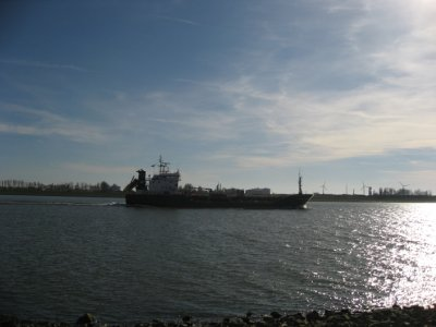 shipping boat, Hoek van Holland