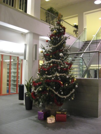Christmas Tree at school