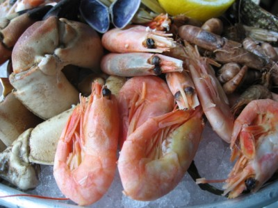 dutch seafood platter