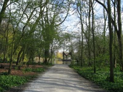 A park in Leiden