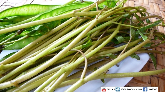 Lao Water Spinach