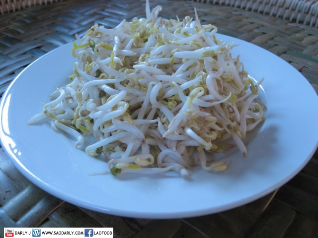 bean sprouts for Rice Stick Noodle Soup