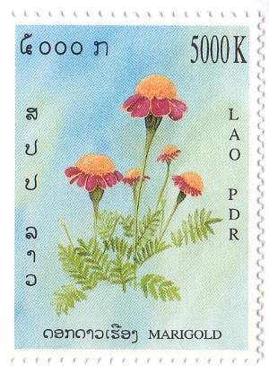 Marigold Lao Stamp