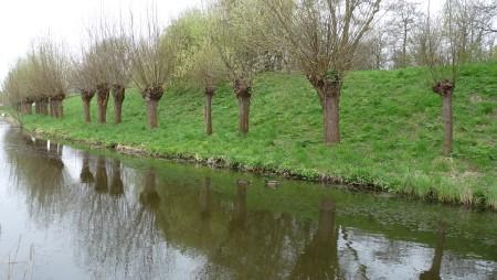 Dutch canal