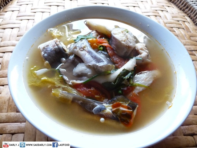 Catfish and Mushroom Soup
