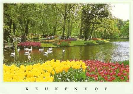keukenhof Postcard with Lao Stamp