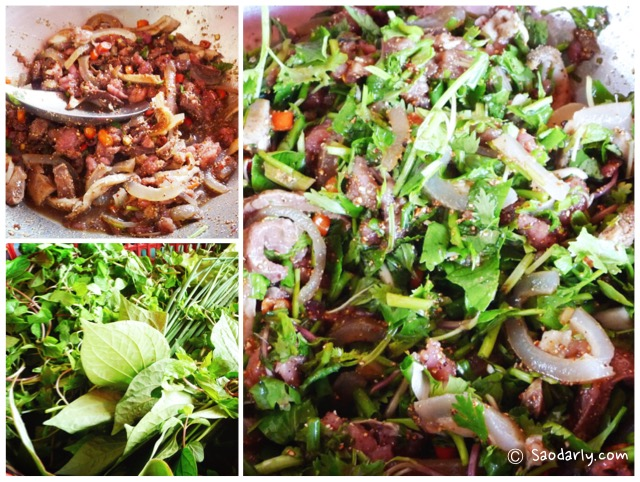 lao minced beef salad