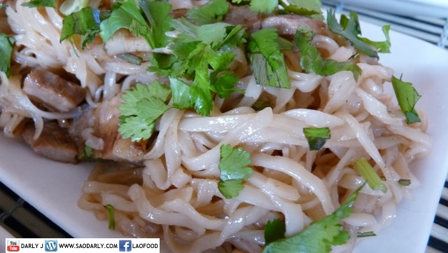 Lao Gren Papaya Salad and Fried Noodle