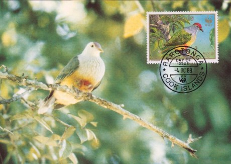 Cook Islands Maximum Card – Birds