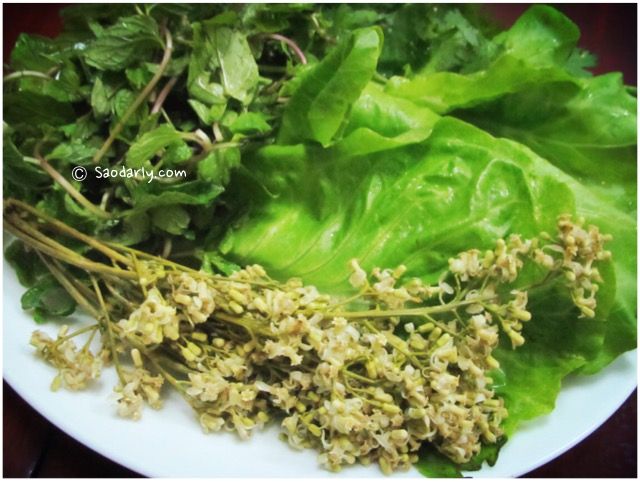 lao herbs and vegetables