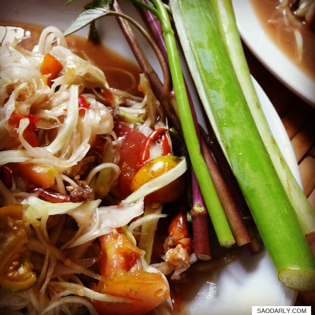 Papaya Salad and Roasted Pork Belly