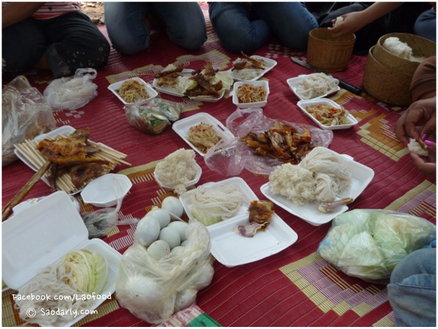 picnic in laos